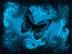 blu.farfalle03235-1600x1200