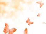 borboletas-desenho-3b8cf