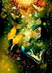 Butterflies_by_TretyakOVKa