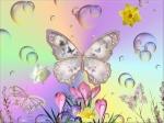 Butterfly-butterflies-17274857-1024-768
