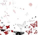 love-butterflies-red-beautiful