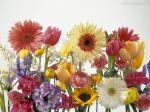 Papel-de-Parede-Arranjo-de-Flores
