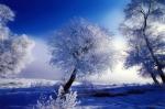 Snow-walls_mywebcave_com.manzara resimleri.paisagem.landscape.paysaje.paysage.winter.inverno.hiver.cold.frio.freddo.froid.ice.snow.gelo.neve.hielo.arbre.albero.arvore