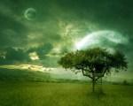 wallpaper.arvore.albero.arbre.ceu.sky.green.escada.lua.papeldeparede