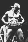 stripper.masculino.erotika.fair.fotografia.de.amanda.tavano